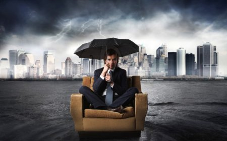 Хүмүүс шинээр бизнес эхлэхдээ гаргадаг гол алдаанууд